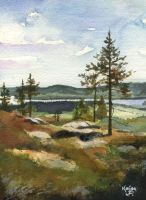 Norhern Summer by Flingling