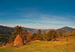 The past autumn 2 by lica20