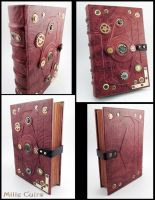 Steampunk journal by MilleCuirs