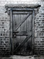 The Door by aalap