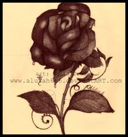 Black s Rose by alukah666