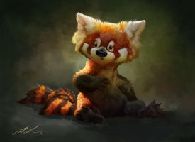 Red panda sketch with video by ailah