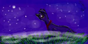 Flyper in the night by Jhoue