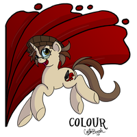 Colour - Pony Sona by DordtChild