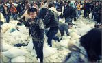 NYC pillow fight 2008 XXII by Tenshi-Ayane