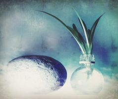 water and a stone by Amalus