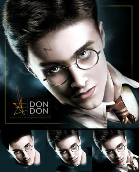Harry Potter by JINhuangHE