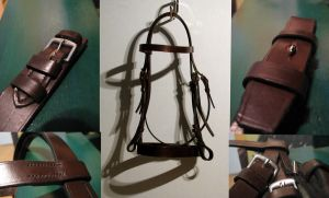 My first bridle by raevenilonka