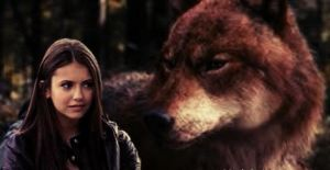 Wolf Jacob and Grown up Renesmee by NENEnewby