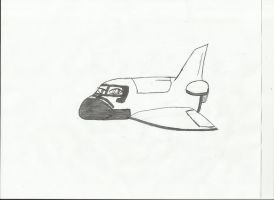 first attempt at a shuttle-maybe a new OC OuO by SweetApplecookie