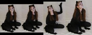 Cat Mari Pack 10 by TwilightAmazonStock