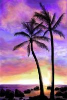 Hawaii sunset by starmist