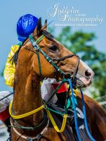 Horse Racing 493 by JullelinPhotography