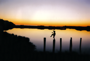 Karate at the Cape Cod marshes by JenniBee