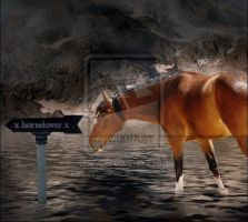. x horselover x . by HoofBeat-Graphics