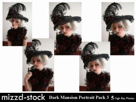 Dark Mansion Portrait Pack 3 by mizzd-stock