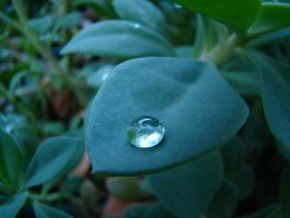 Water Droplet by stephuhnoids