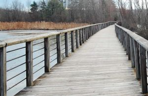 wooden walkway by MLeighS