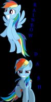 For Rainbow Dash by FireFly1800