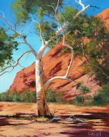 Outback Ghost Gum by artsaus