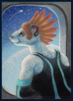 ACEO: Fly Me to the Moon by aboveClouds