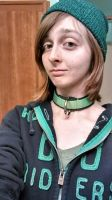 Nylon Strapping Collar by PandapardProductions