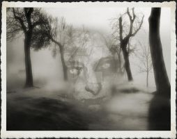 Spooky in the foggy forest by Travail-de-lame