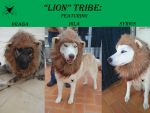 Lion Tribe by Karmakat01
