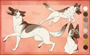 STS Dog - Ying by ShockTherapyStables