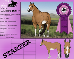 WMS Chico's Dun It - Elite - 131.5 by Starcather9