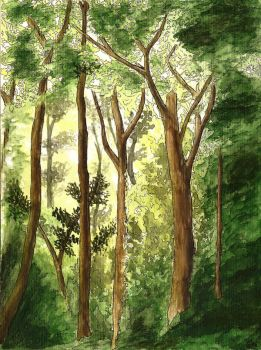 Forest  watercolor by Lodjur94