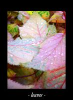 - leaves - by SchlauesSchatzi