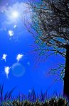 Fairy Land by Neko-dragon