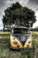 VW Splitscreen by decender