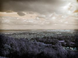 View from Arthurs Seat by sicklittlemonkey