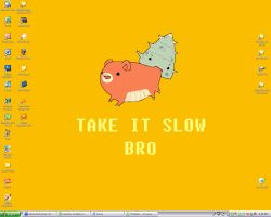 Take it Slow Bro by montiray