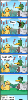 Duckweed by theodd1soutcomic