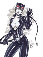 Catwoman 02 by BanebrookStudios