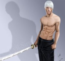 Guess ... Dante or Vergil? by Evil-Siren