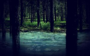 Forest Stock II by Lucy-Eth-Stock