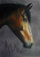 ACEO Portrait of a Nobleman by lefty59