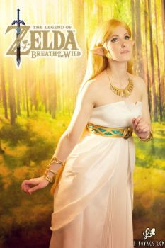 Princess Zelda - Breath of the Wild Cosplay by LiKovacs