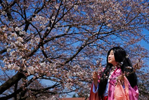 The Tale of Princess Kaguya: Spring Blossoms by matcha-au-lait