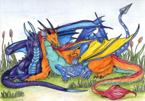 Dragon Companions by Dragonmistral