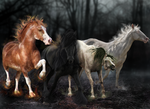 Horses of the Apocalypse by Exotic-Creations