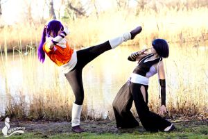 Yoruichi vs Soi Fon by greengreencat