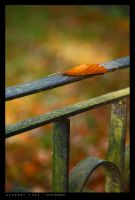 October Rust by Dwor-kin