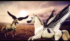 Let's spread our wings by crystalcleargfx