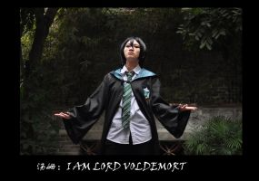 HP COS Tom Riddle:THE MEMORY OF 16 17 by Verlit