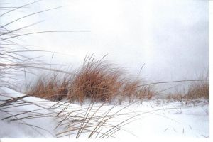 Snow Dune I by Blacksand459